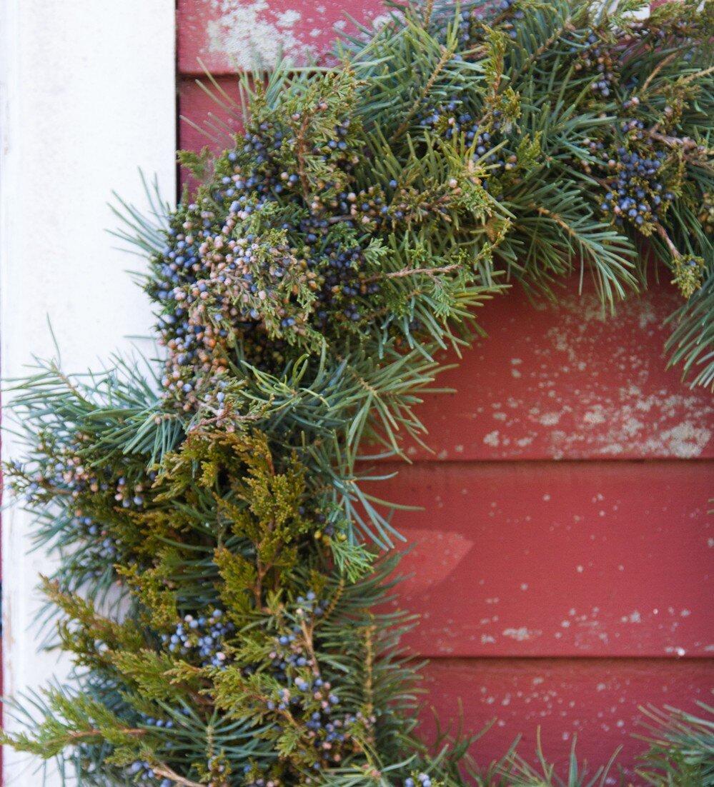 cedar wreath | reading my tea leaves