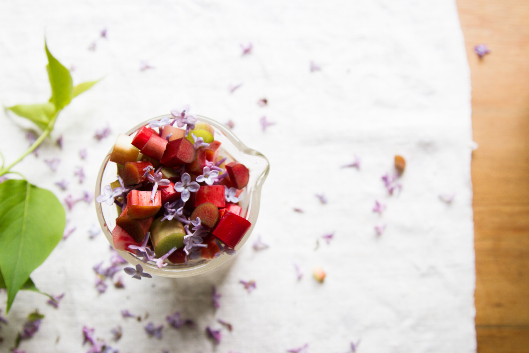 rhubarb and lilac spritzer | reading my tea leaves