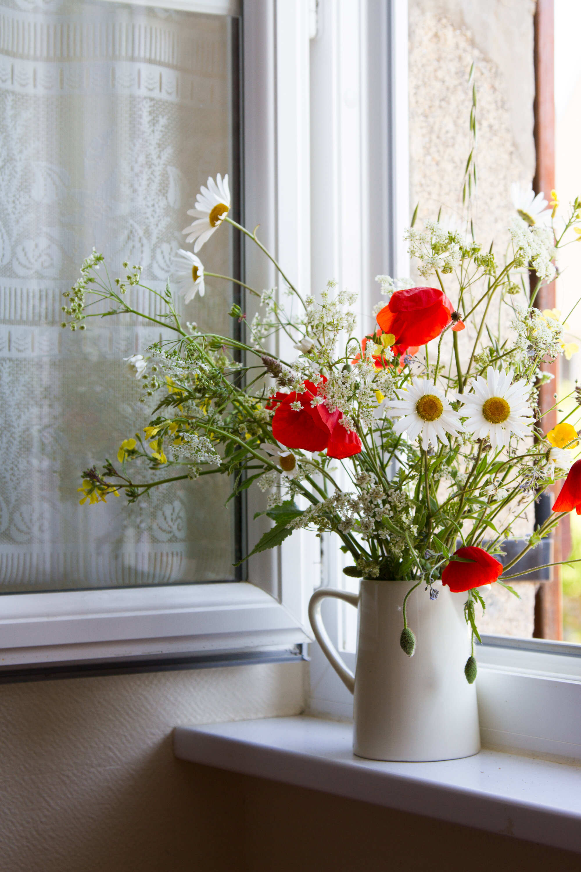 roadside flowers in brittany | reading my tea leaves