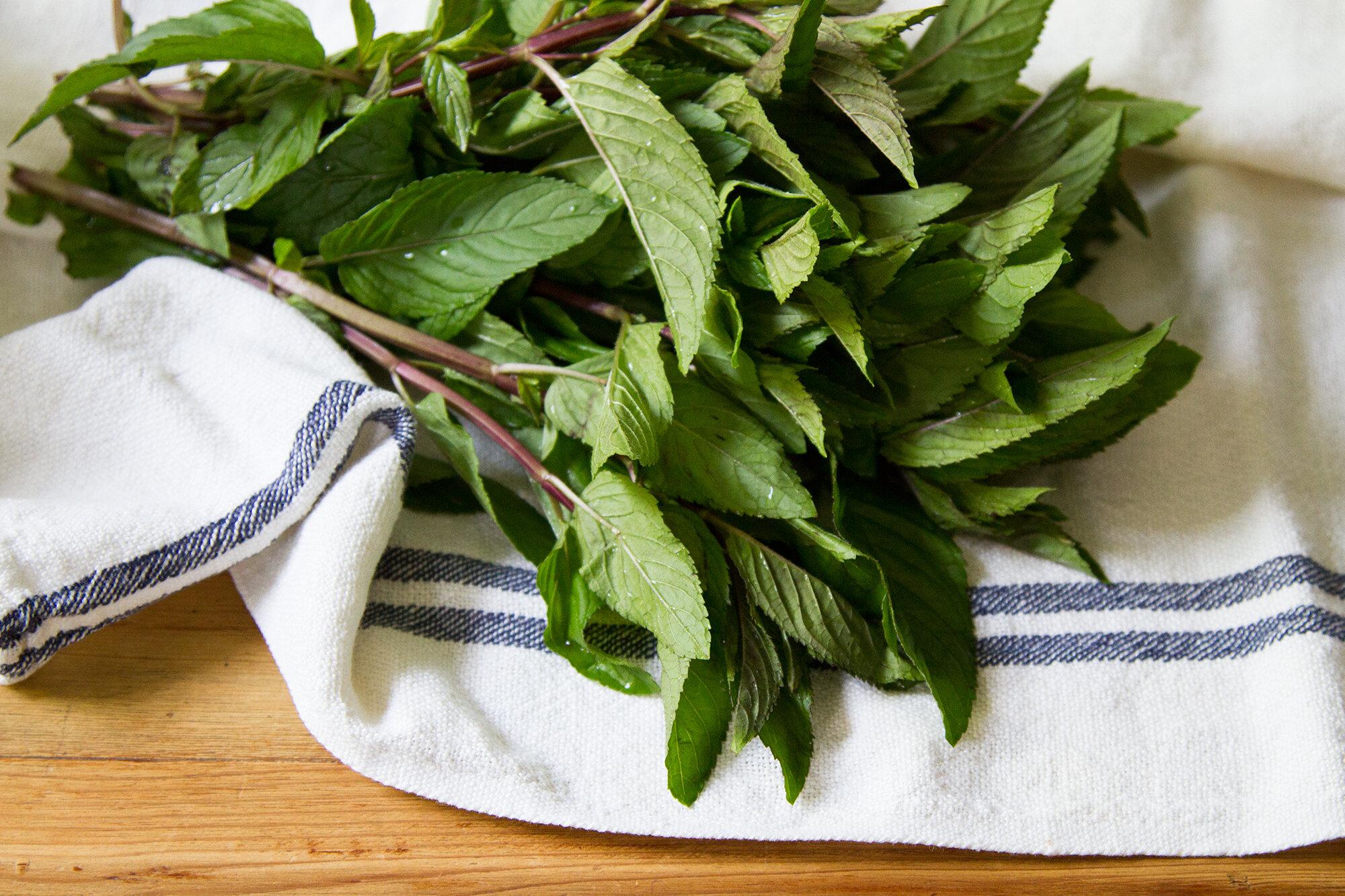 zero-waste produce storage | reading my tea leaves