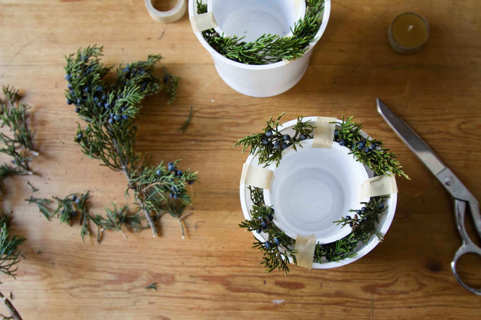ice lanterns | reading my tea leaves